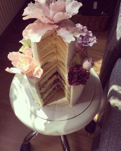 makos-meggyes-habcsoklapos-torta-keszitese-tortaiksola-1 (6)