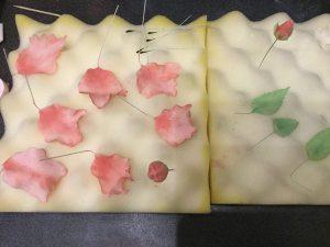 papagaj-tulipan-keszitese-tortaiksola-glazurshop-1 (15)