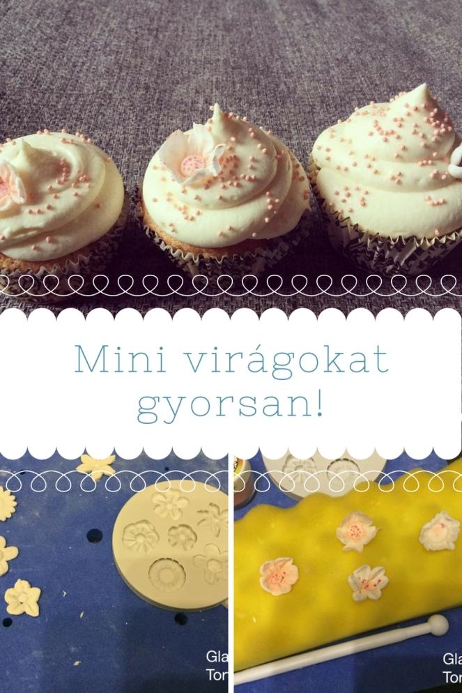 mini-viragok